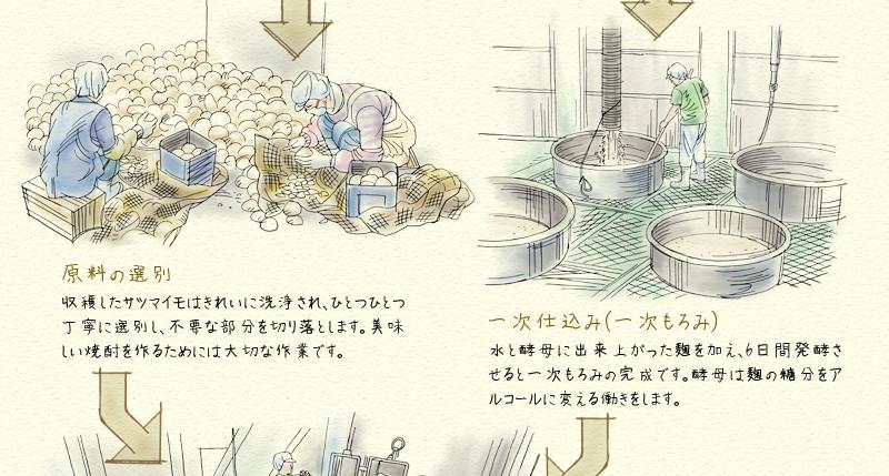 芋焼酎行程2